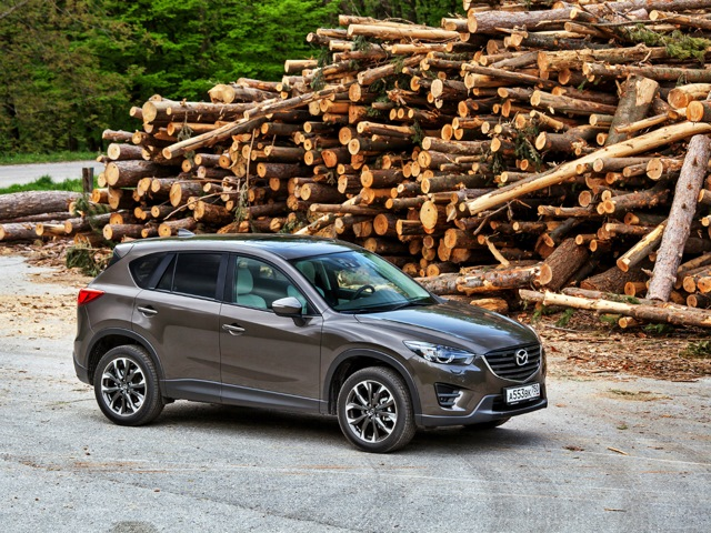 Mazda CX-5 на фоне сваленного леса